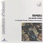 Philippe Herreweghe Rameau: Grands Motets