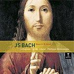 Philippe Herreweghe Bach Mass In B Minor
