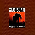 Slo Burn Amusing The Amazing