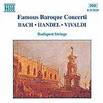 Budapest Strings Famous Baroque Concertos