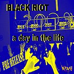 Black Riot A Day In The Life-2009 Mixes-WMC Pre-Release