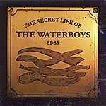 The Waterboys The Secret Life Of The Waterboys '81-'85