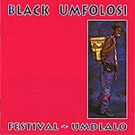 Black Umfolosi Festival - Umdlalo