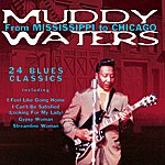 Muddy Waters From Mississippi To Chicago
