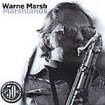 Warne Marsh Marshlands