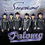Palomo Sueños