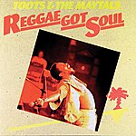 Toots & The Maytals Reggae Got Soul