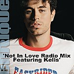 Enrique Iglesias Not In Love (Radio Mix)