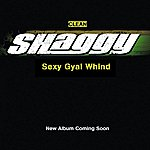 Shaggy Sexy Gyal Whind (single)