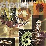 Stevie Wonder Natural Wonder