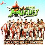 Banda Maguey Para Que No Me Olvides