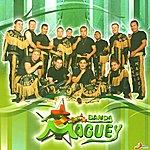 Banda Maguey Como México No Hay Dos