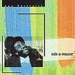 Eek-A-Mouse RAS Portraits