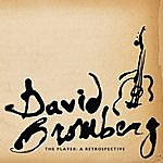 David Bromberg The Player: A Retrospective