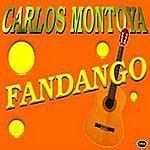 Carlos Montoya Fandago