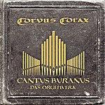 Corvus Corax Cantus Buranus - Das Orgelwerk