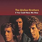 Walker Brothers If You Could Hear Me Now