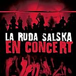 La Ruda Salska En Concert