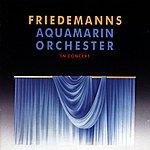 Friedemann Aquamarin Orchester In Concert