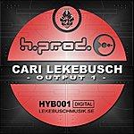 Cari Lekebusch Output 1