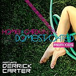 Derrick Carter Domesticated Remixes