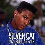 Silver Cat In A Foul Affair