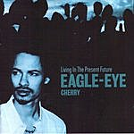 Eagle-Eye Cherry Living In The Present Future