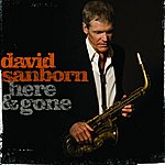 David Sanborn Here & Gone
