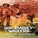 Bob Marley Grooving Kingston 12