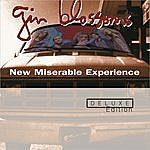 Gin Blossoms New Miserable Experience (Deluxe Edition)
