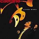 Caetano Veloso Prenda Minha Ao Vivo (Live 1998)