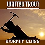 Walter Trout Workin' Class (Single)