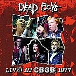 Dead Boys Live At CBGB 1977