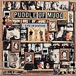 Puddle Of Mudd Life On Display