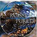 Laurent Dury Ruisseau Pureté