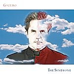 Gazebo The Syndrone