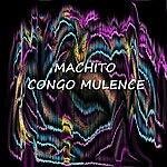 Machito Congo Mulence