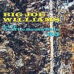 Big Joe Williams Live On The South Side 63