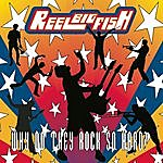 Reel Big Fish Why Do They Rock So Hard