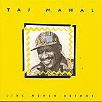 Taj Mahal Like Never Before