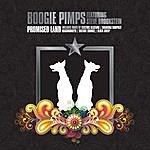 Boogie Pimps Promised Land (Feat. Steve Brookstein)