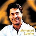 Mohamed Lamine Mohamed Lamine