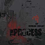 The Process Vultures Of Human Decay
