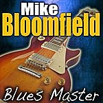 Michael Bloomfield Blues Master