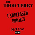"""Todd Terry The Todd Terry Project """"Unreleased Part Five"""""""
