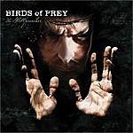 Birds Of Prey The Hellpreacher