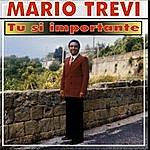 Mario Trevi Tu Si Importante