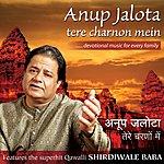 Anup Jalota Tere Charnon Mein