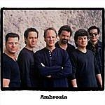 Ambrosia Ambrosia
