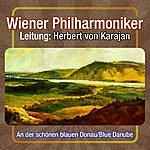 Wiener Philharmoniker An Der Schoenen Blauen Donau